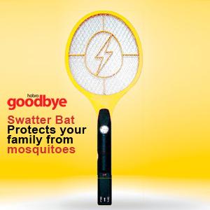 Goodbye Electric Flies Bat